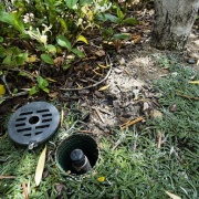 Root-zone-watering-system-
